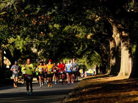 Course à l'ombre des chênes lors du marathon de Louisiane