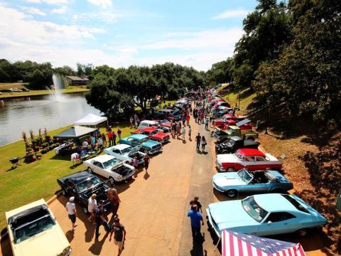 Voitures de collection exposées au Natchitoches Car Show